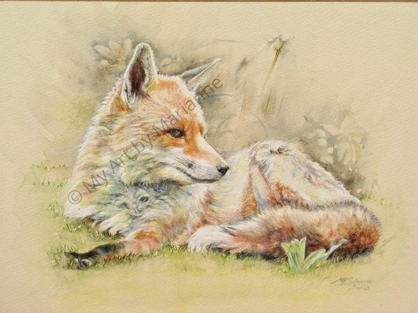 Hawk Pet Fox by Marianne P Schipper