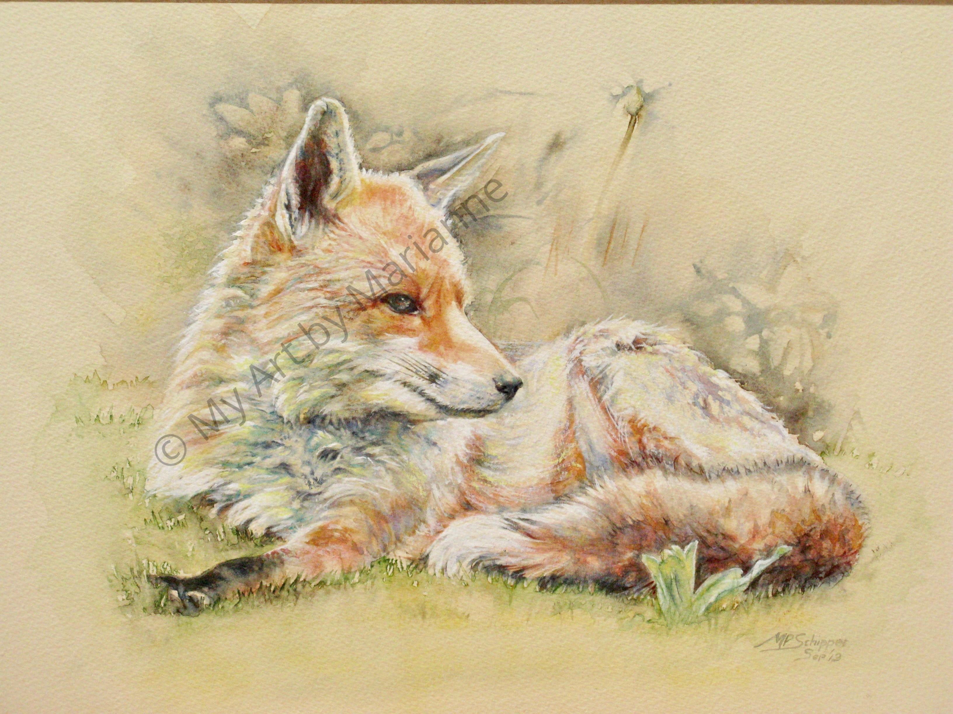 Hawk Pet Fox by Marianne P Schipper